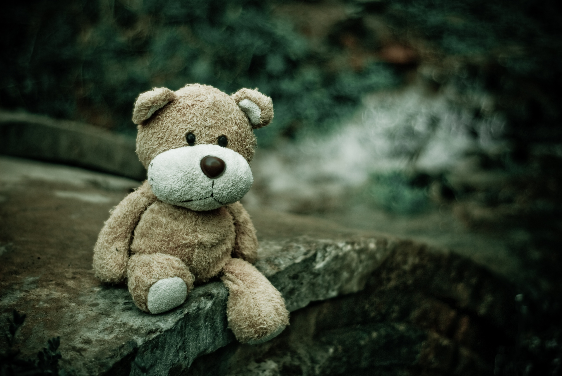 sibling sexual child abuse