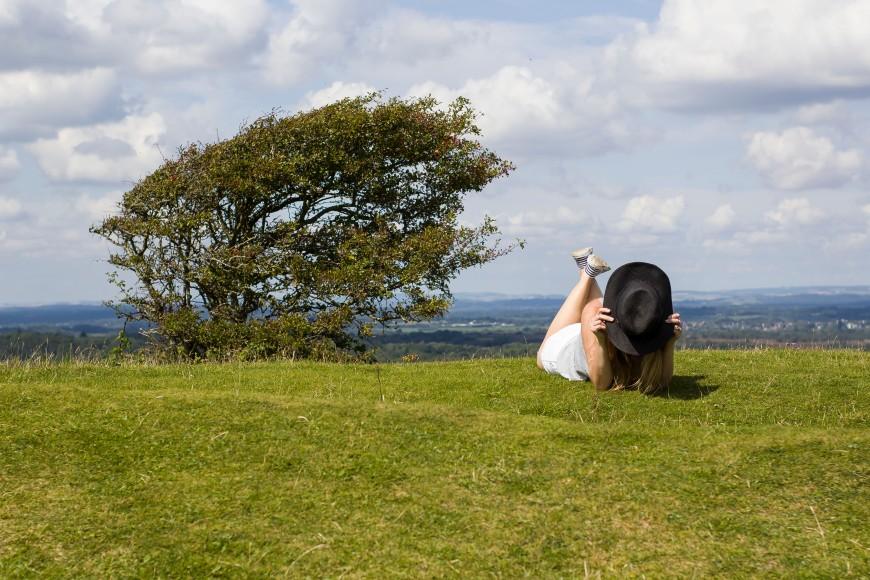 Dorset Blogger